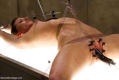 Obedience model Ariel X experiences hardcore nipple clamp torture